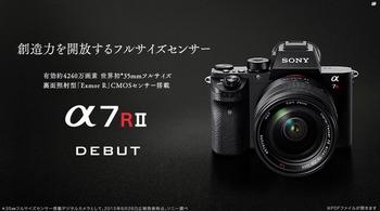 r2-1.jpg